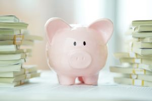 decorative photo - piggy bank surrounded by money