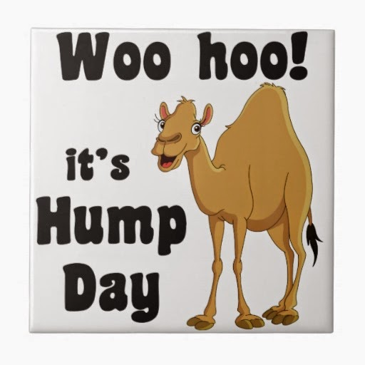 First Fall Semester Hump Day - Center for Health Education ...
