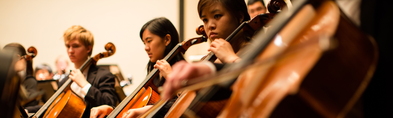 hso-cellist