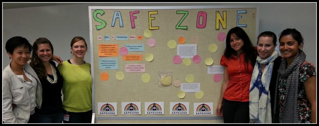 safe zone facilitators