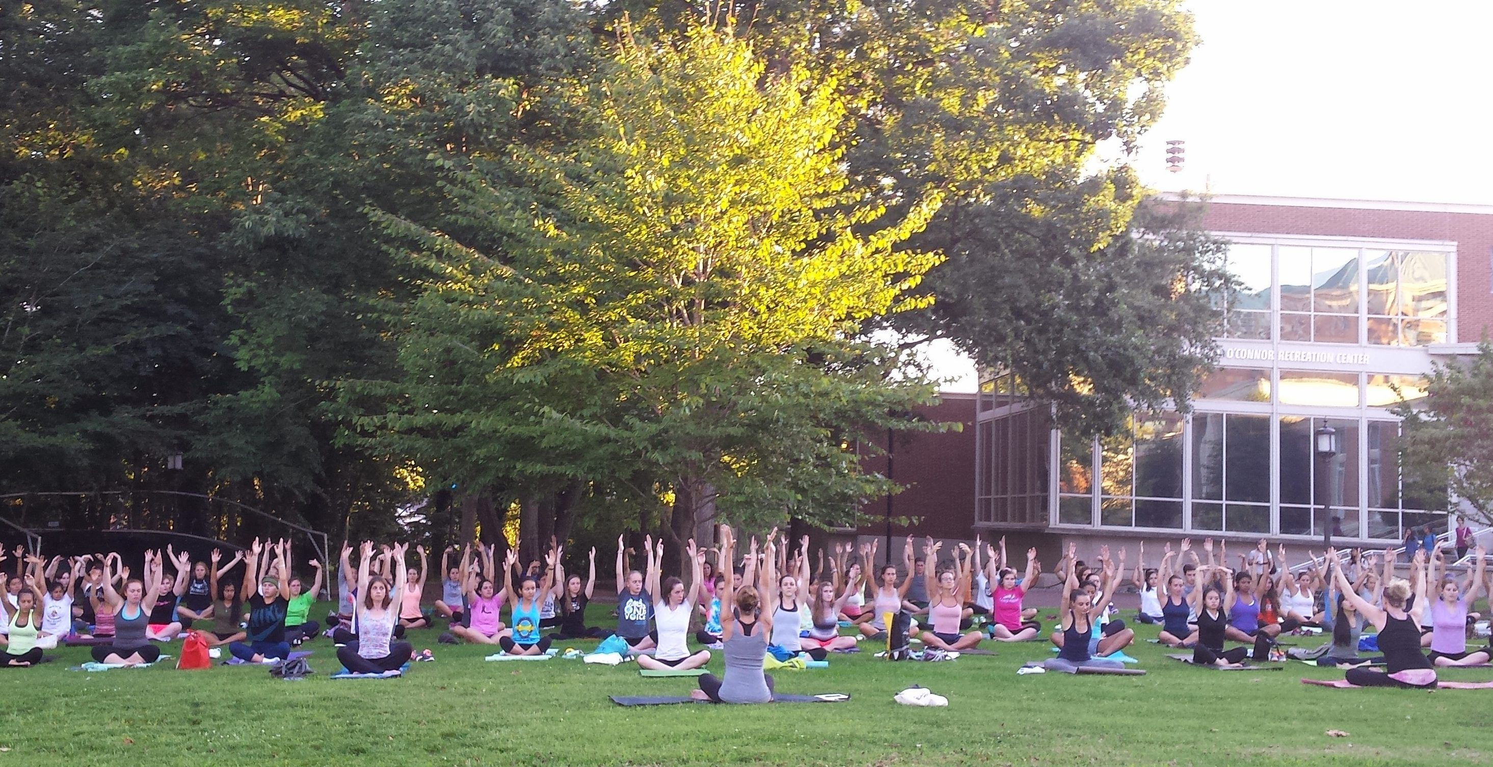 A wide view of many participants stretching on yoga mats with a lead instructor.