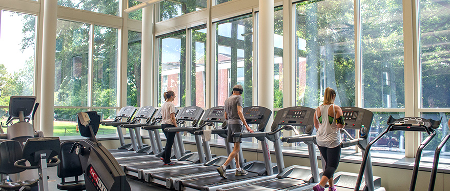 Members running on the treadmills in the fitness room