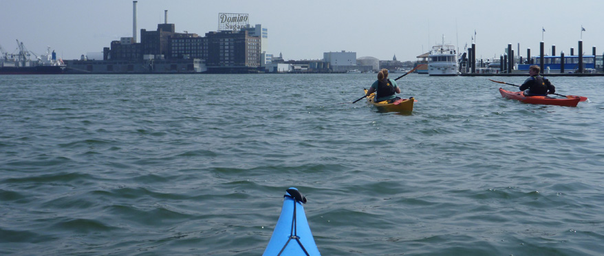 From the tip of a sea kayak, a view of the inner harbor skyline; another kayaker in the foreground.