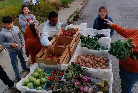 Young adults congregate around crates of fresh fruits and vegetables.